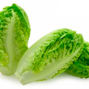 Lechuga Little Gem - Lettuce - Natural Salads